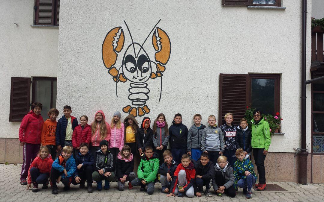 CŠOD Rak – šola v naravi